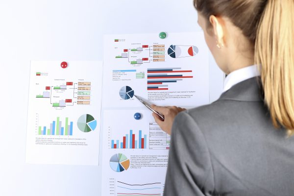 The young businesswoman showing graphs by pen. Presentation
